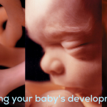 Ground Zero: Understanding Your Baby's Development